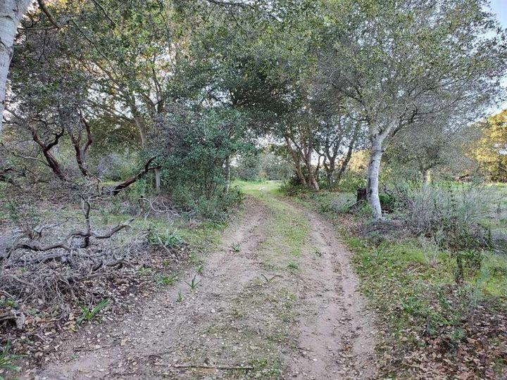 San Miguel Canyon Rd Royal Oaks CA. Photo 6 of 18