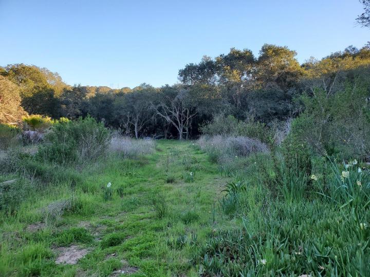 San Miguel Canyon Rd Royal Oaks CA. Photo 7 of 18