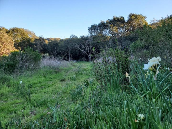 San Miguel Canyon Rd Royal Oaks CA. Photo 8 of 18