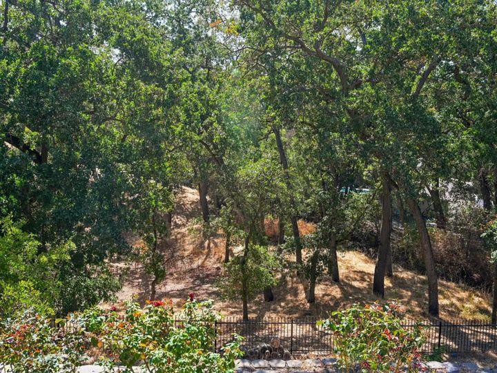 349 Brianne Ct Pleasanton CA Home. Photo 36 of 37
