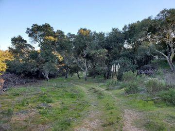San Miguel Canyon Rd Royal Oaks CA. Photo 5 of 18