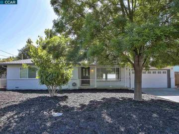 1224 Craig Dr, Diablo Estates, CA