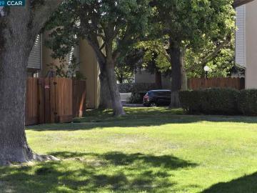 1445 Bel Air Dr, Torrey Pines, CA
