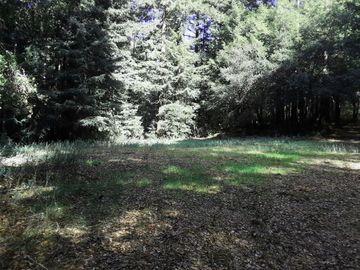 18400 Hwy9, Boulder Creek, CA