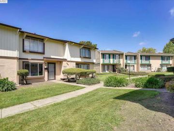 27691 Del Norte Ct, Glen Eden, CA