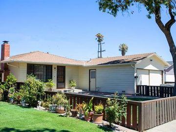 311 Sylvia Ave, Milpitas, CA