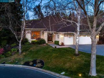 352 Red Maple Dr, Silvermaple, CA