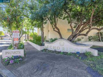 390 Catalan Way, Echo Ridge, CA