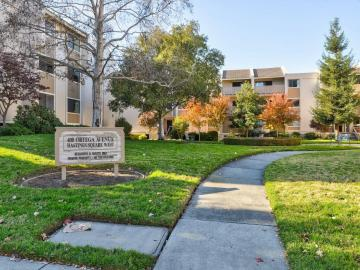 400 Ortega Ave unit #206, Mountain View, CA