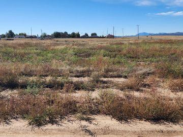 475 W Guymas Tr, Residential & Mobile, AZ