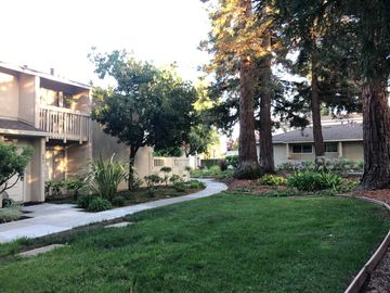 686 Picasso Ter, Sunnyvale, CA