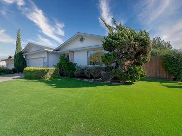 902 Iris Ave Sunnyvale CA Home. Photo 3 of 40